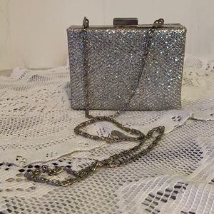 Sparkling Versatile Purse/Clutch